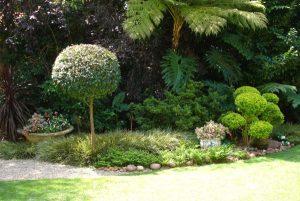 Garden & Grounds Maintenance